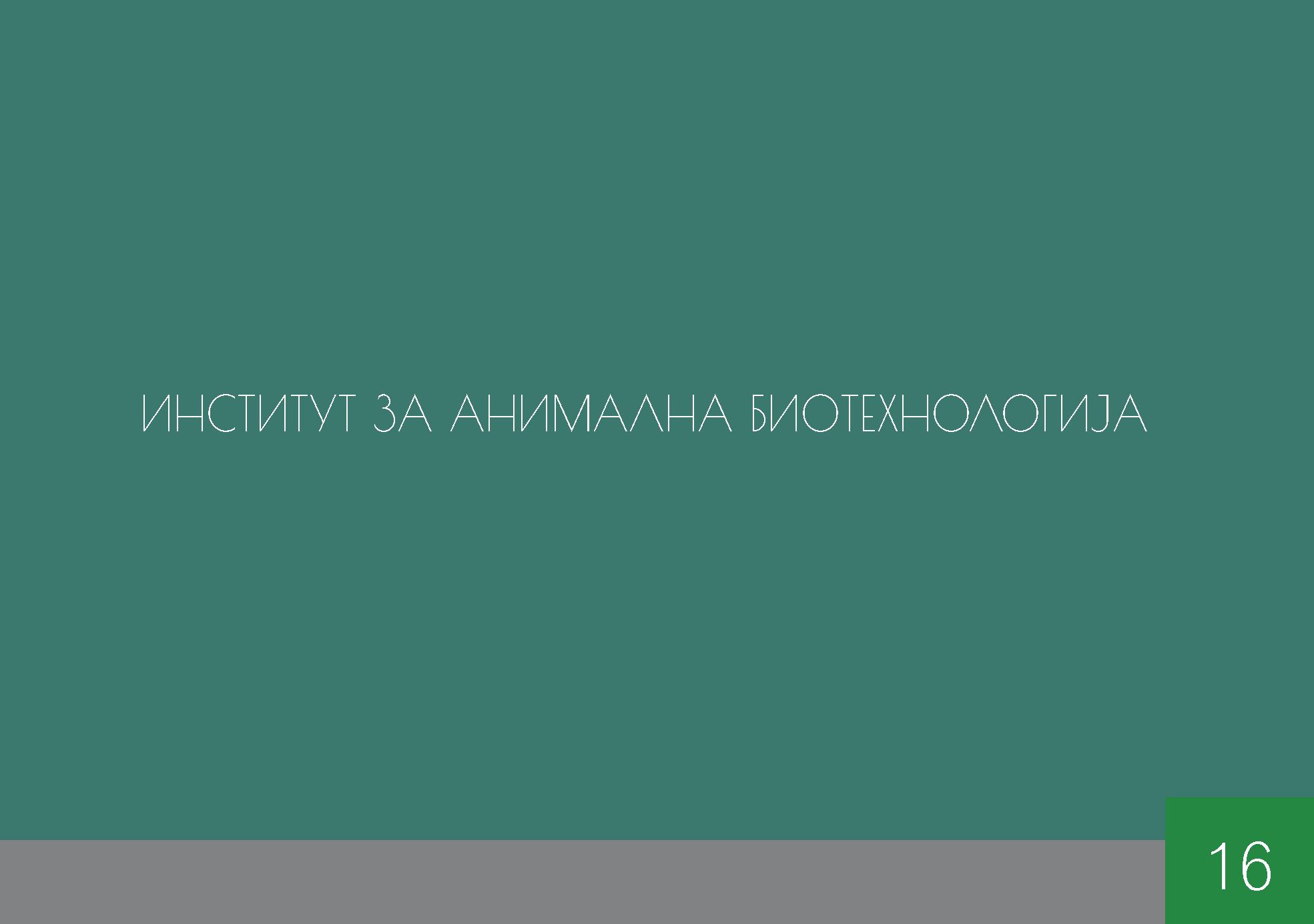 animalna.png